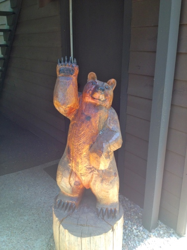 Just your average, friendly neighborhood bear.