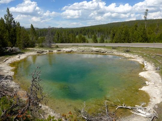 Yellowstone 17