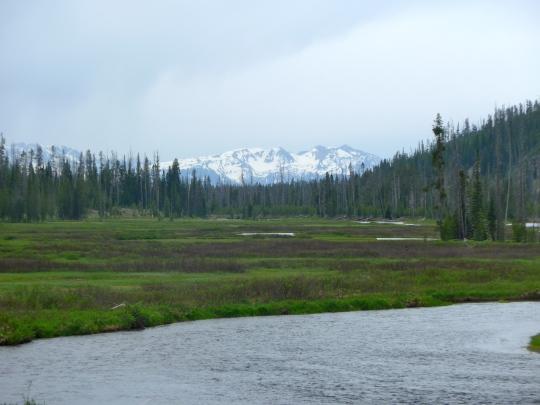 Yellowstone 28