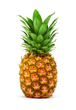 pineapple-05